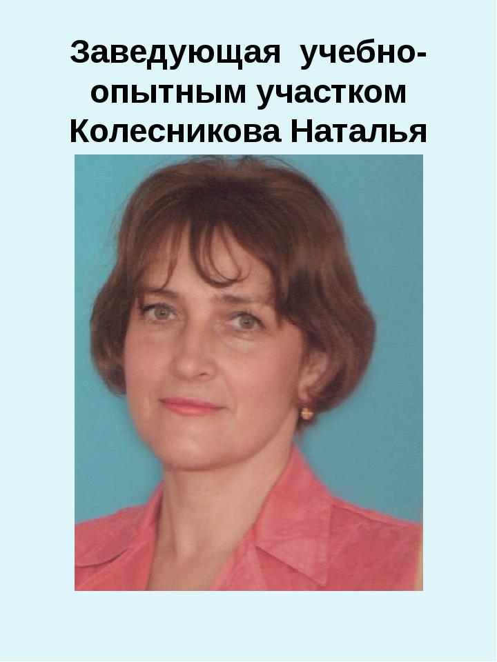 Заведующая учебно-опытным участком Колесникова Наталья Дмитриевна.
