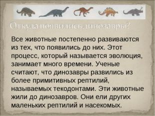 Все животные постепенно развиваются из тех, что появились до них. Этот процес