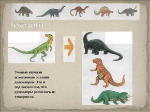 . Ученые изучали ископаемые останки динозавров. Это и подсказало им, что дин