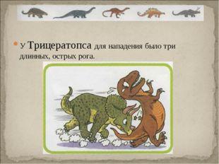 У Трицератопса для нападения было три длинных, острых рога.