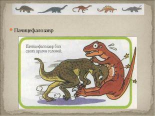 Пачицефалозавр