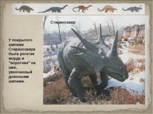 """У покрытого шипами Стиранозавра была рогатая морда и """"воротник"""" на шее, увенч"""