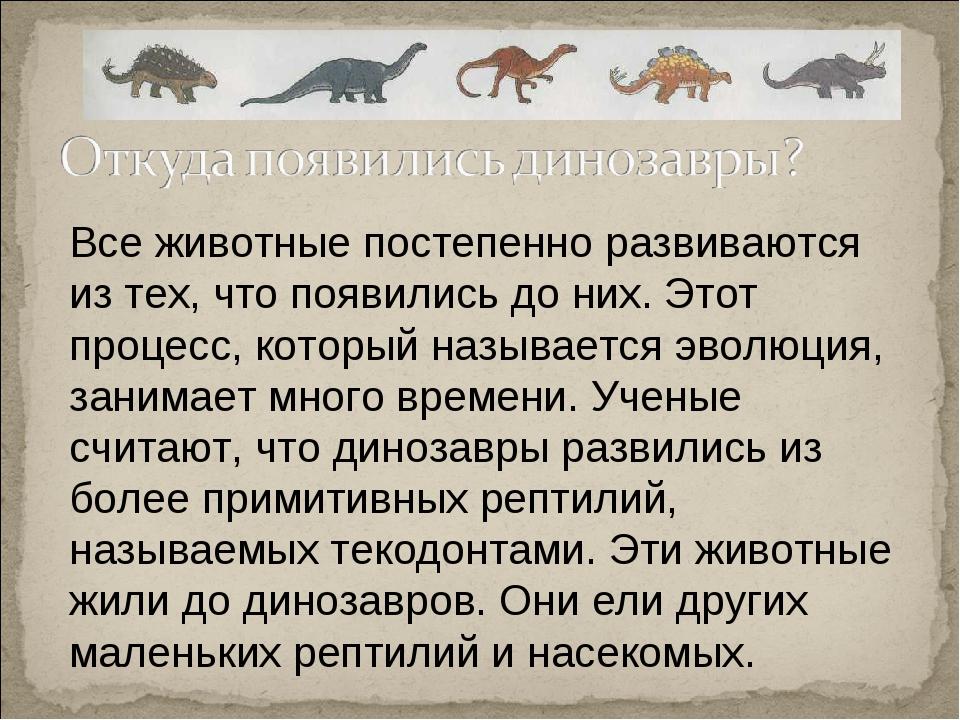 Все животные постепенно развиваются из тех, что появились до них. Этот процес...