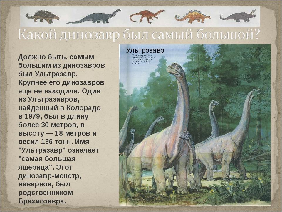 Должно быть, самым большим из динозавров был Ультразавр. Крупнее его динозавр...