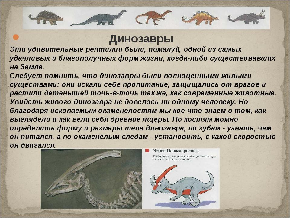 Динозавры Эти удивительные рептилии были, пожалуй, одной из самых удачливых...
