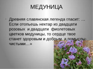 МЕДУНИЦА Древняя славянская легенда гласит: …Если отопьешь нектар из двадцати