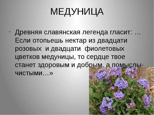 МЕДУНИЦА Древняя славянская легенда гласит: …Если отопьешь нектар из двадцати...