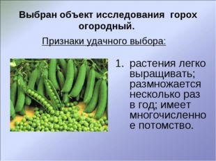 Выбран объект исследования горох огородный. растения легко выращивать; размно