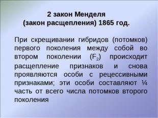 2 закон Менделя (закон расщепления) 1865 год. При скрещивании гибридов (пото