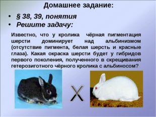 Домашнее задание: § 38, 39, понятия Решите задачу: Известно, что у кролика чё