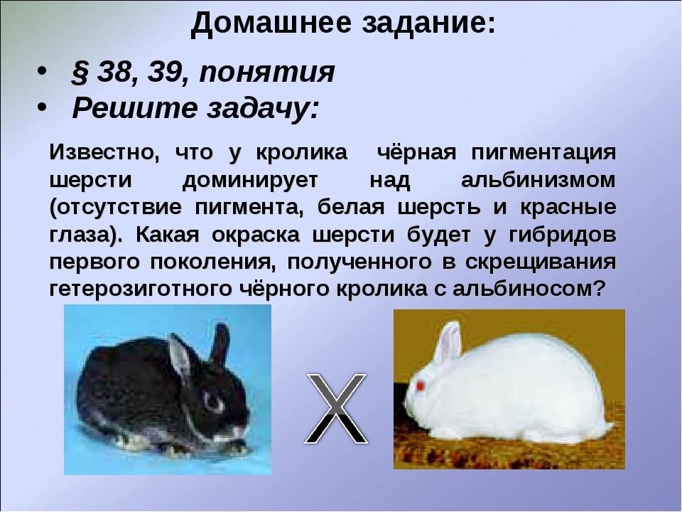 Домашнее задание: § 38, 39, понятия Решите задачу: Известно, что у кролика чё...