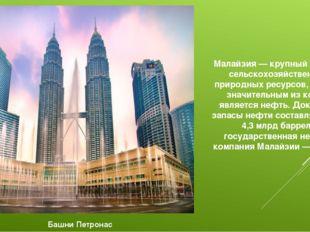 Малайзия — крупный экспортёр сельскохозяйственных и природных ресурсов, наиб
