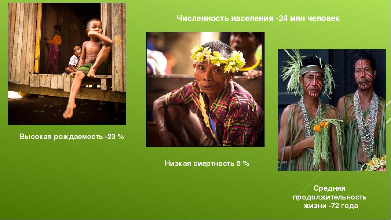 Численность населения -24 млн человек Высокая рождаемость -23 % Низкая смертн...