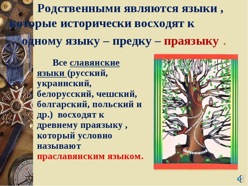Родственными являются языки , которые исторически восходят к  одному язык...