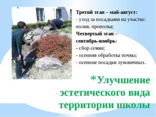 Улучшение эстетического вида территории школы Третий этап – май-август: - ухо