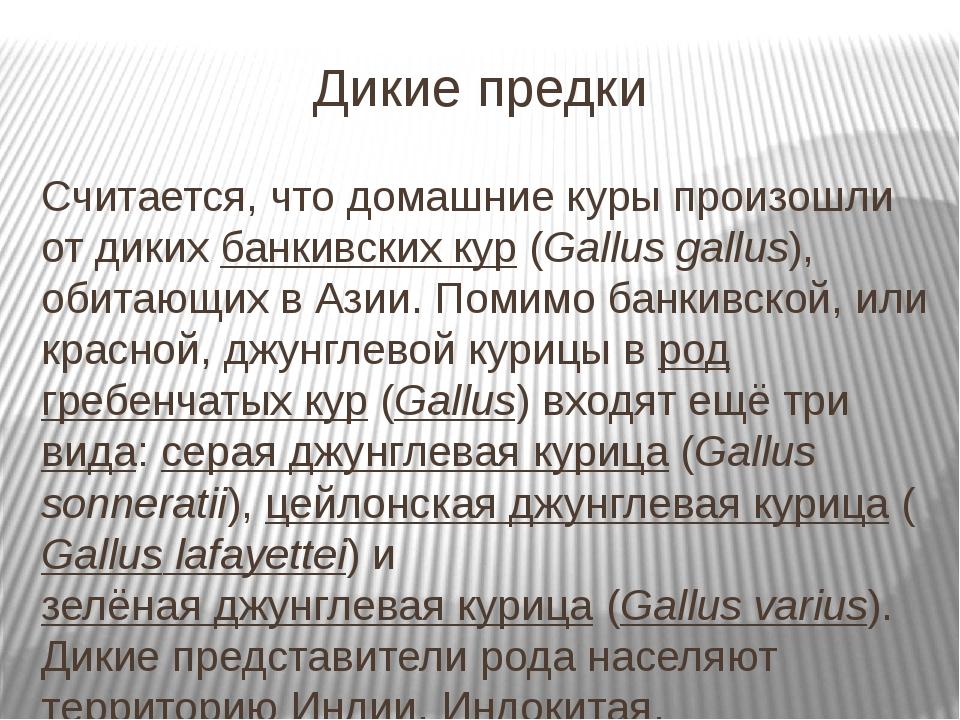 Дикие предки Считается, что домашние куры произошли от дикихбанкивских кур(...