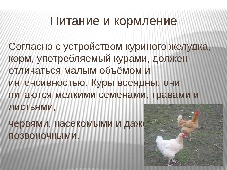 Питание и кормление Согласно с устройством куриногожелудка, корм, употребляе...