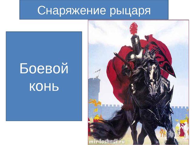 Боевой конь Снаряжение рыцаря