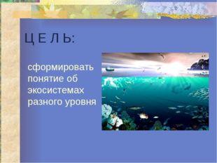 Ц Е Л Ь: сформировать понятие об экосистемах разного уровня