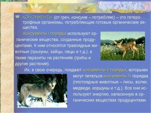 КОНСУМЕНТЫ (от греч. консуме – потребляю) – это гетеро-трофные организмы, пот