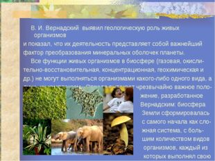 В. И. Вернадский выявил геологическую роль живых организмов и показал, что и