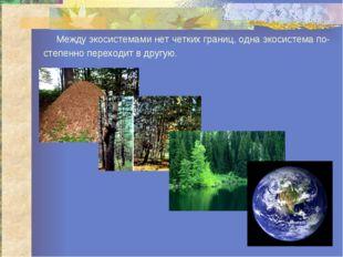 Между экосистемами нет четких границ, одна экосистема по- степенно переходит