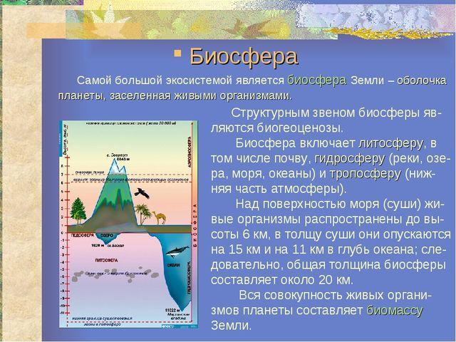 Самой большой экосистемой является биосфера Земли – оболочка планеты, заселе...