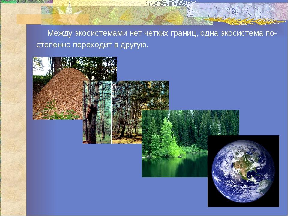 Между экосистемами нет четких границ, одна экосистема по- степенно переходит...