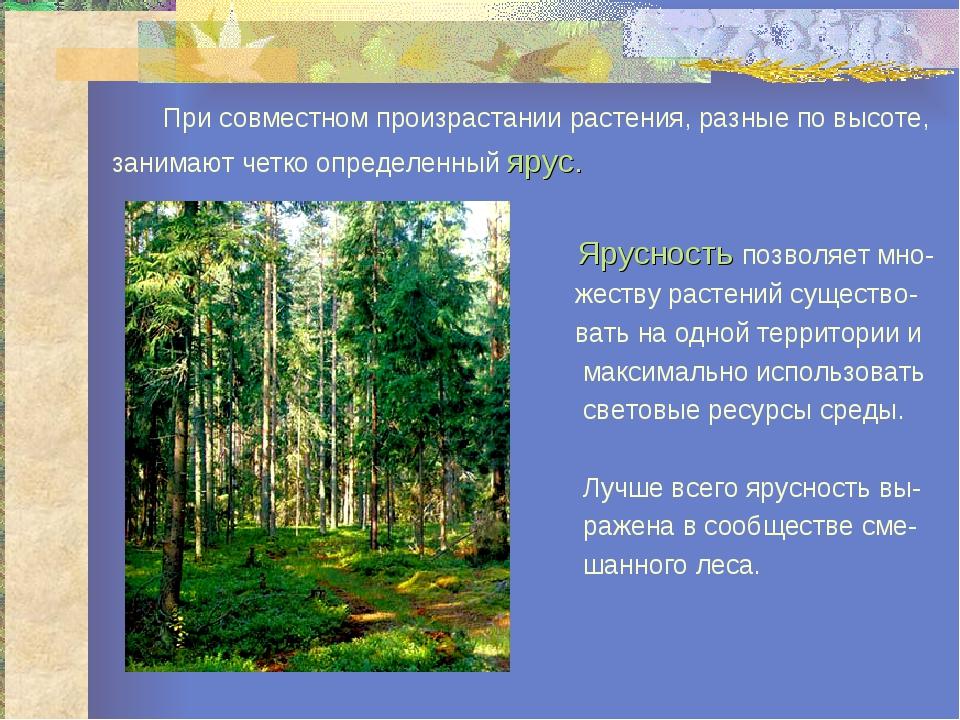При совместном произрастании растения, разные по высоте, занимают четко опре...