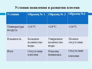 Условия появления и развития плесени УсловияОбразец № 1Образец № 2Образец