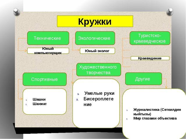 Кружки Технические Экологические Туристско-краеведческое Спортивные Художеств...