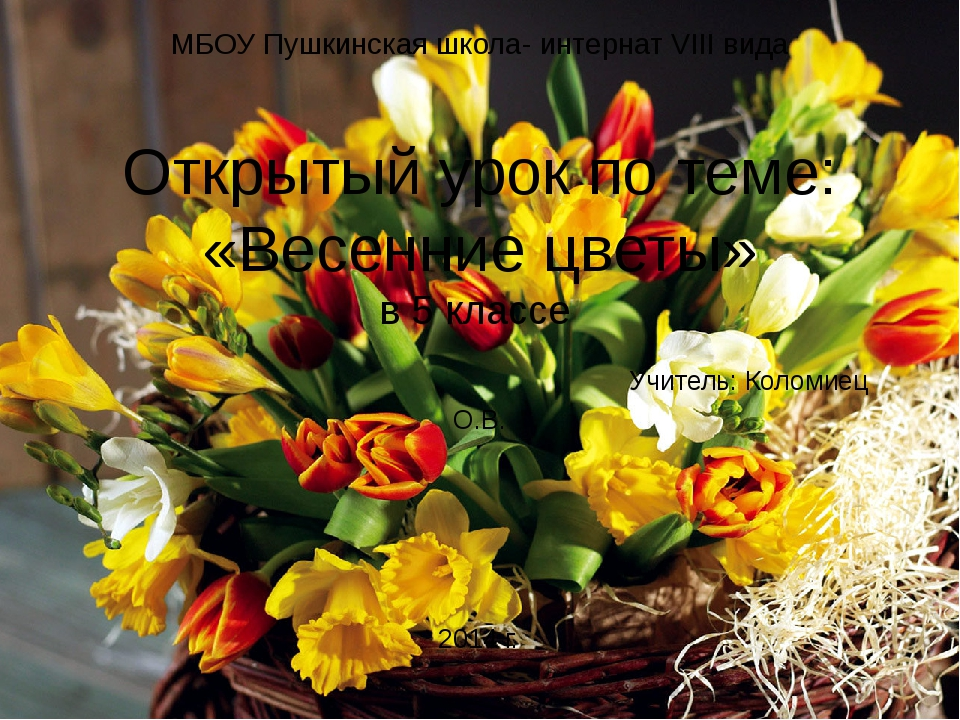 МБОУ Пушкинская школа- интернат VIII вида Открытый урок по теме: «Весенние цв...