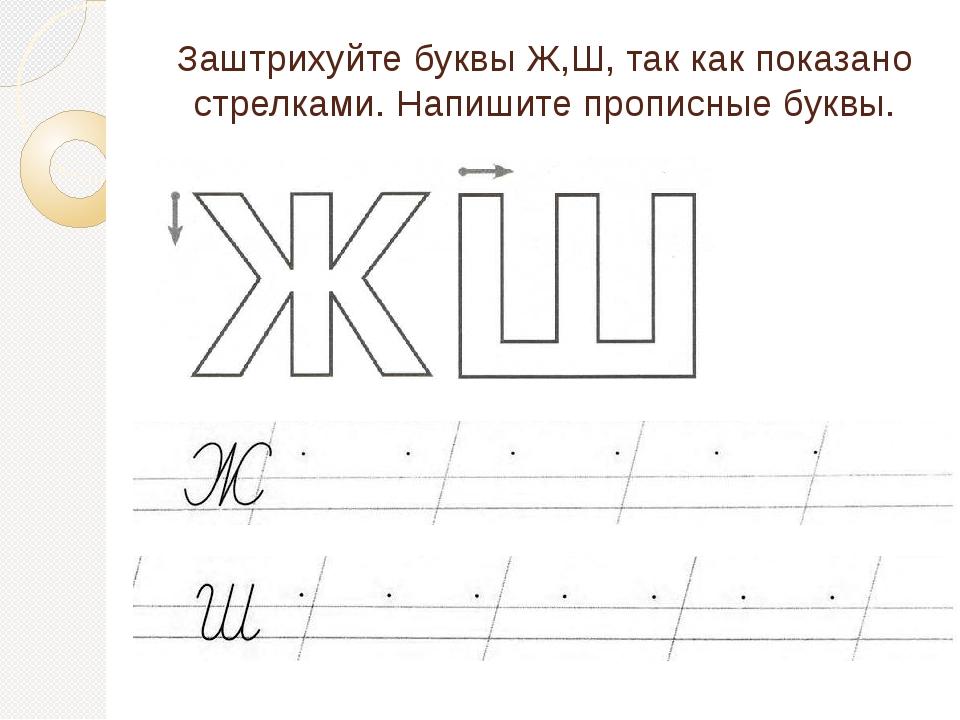 Заштрихуйте буквы Ж,Ш, так как показано стрелками. Напишите прописные буквы.