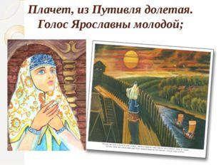 Плачет, из Путивля долетая. Голос Ярославны молодой;