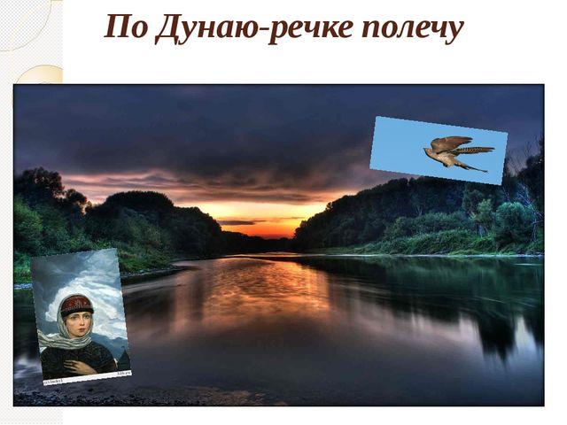 По Дунаю-речке полечу