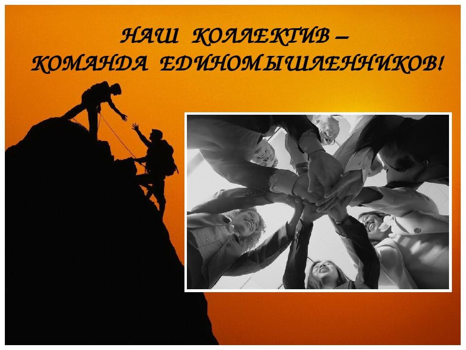 НАШ КОЛЛЕКТИВ – КОМАНДА ЕДИНОМЫШЛЕННИКОВ!