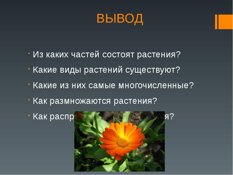ВЫВОД Из каких частей состоят растения? Какие виды растений существуют? Какие...