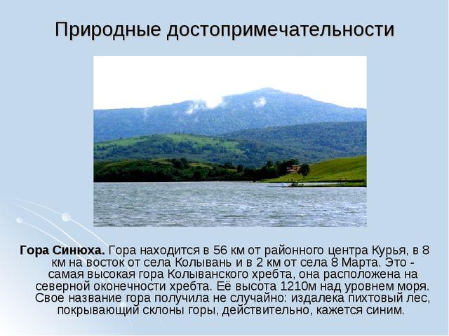 Природные достопримечательности Гора Синюха. Гора находится в 56 км от районн...