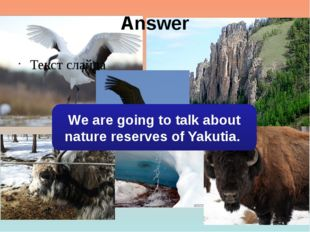 Answer Текст слайда We are going to talk about nature reserves of Yakutia.