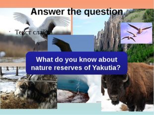 Answer the question Текст слайда What do you know about nature reserves of Ya