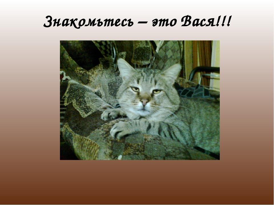 Знакомьтесь – это Вася!!!