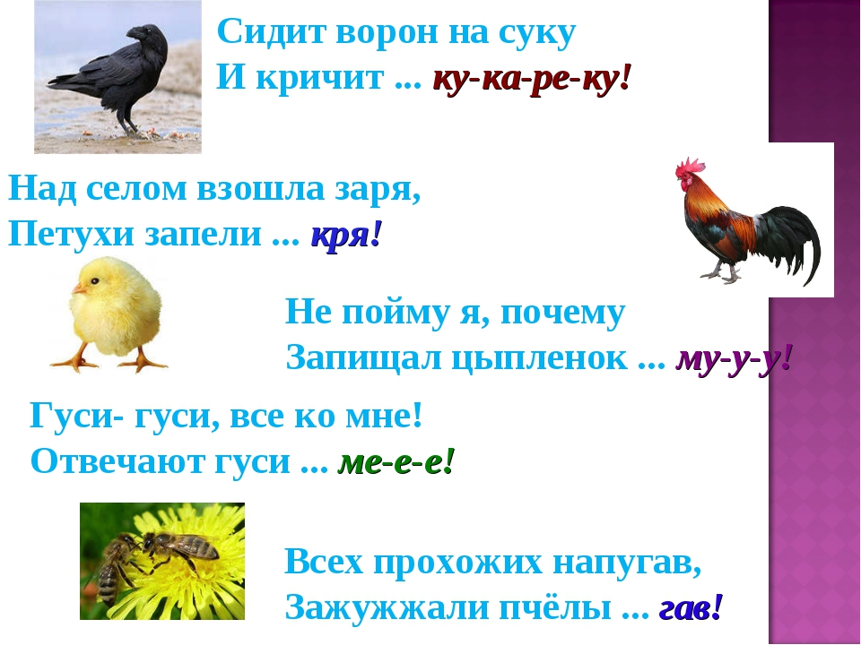 hello_html_m500135ee.jpg