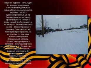 Верхнее Турово – село, один из крупных населенных пунктов Нижнедевицкого райо
