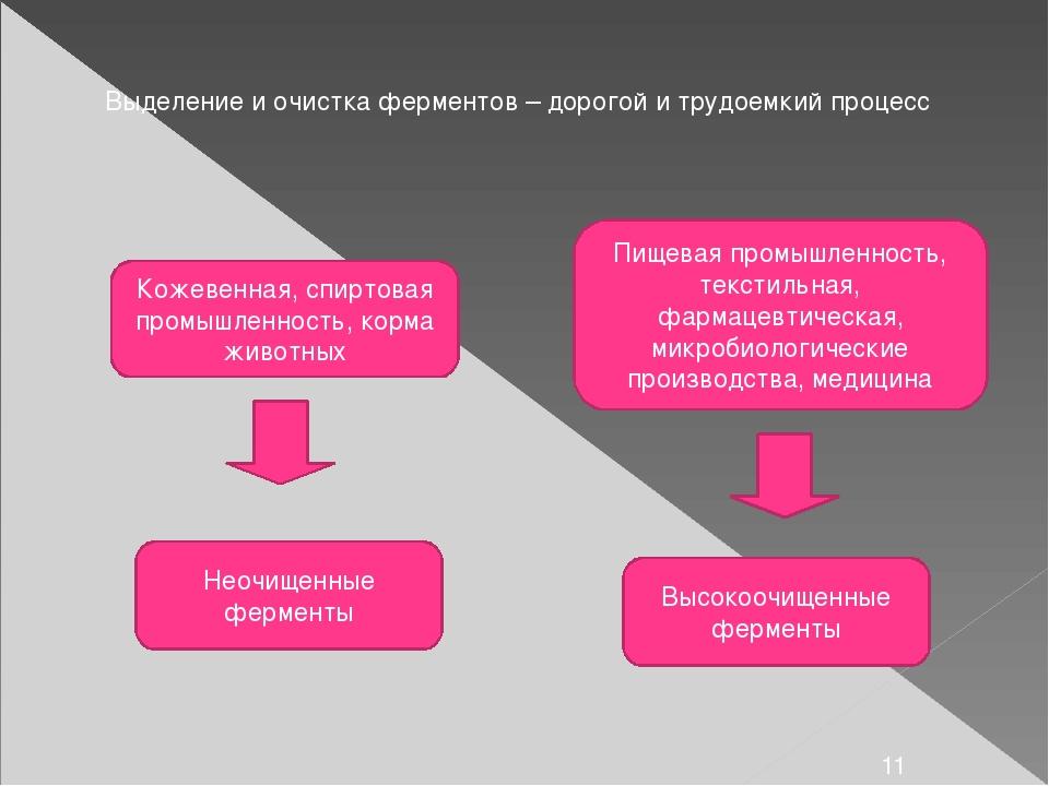 Выделение и очистка ферментов – дорогой и трудоемкий процесс Кожевенная, спир...
