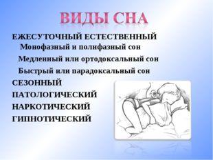 ЕЖЕСУТОЧНЫЙ ЕСТЕСТВЕННЫЙ Монофазный и полифазный сон Медленный или ортодоксал