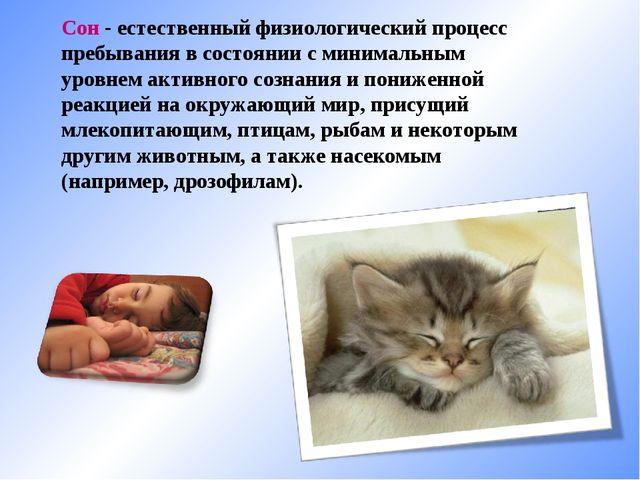 Сон - естественный физиологический процесс пребывания в состоянии с минимальн...
