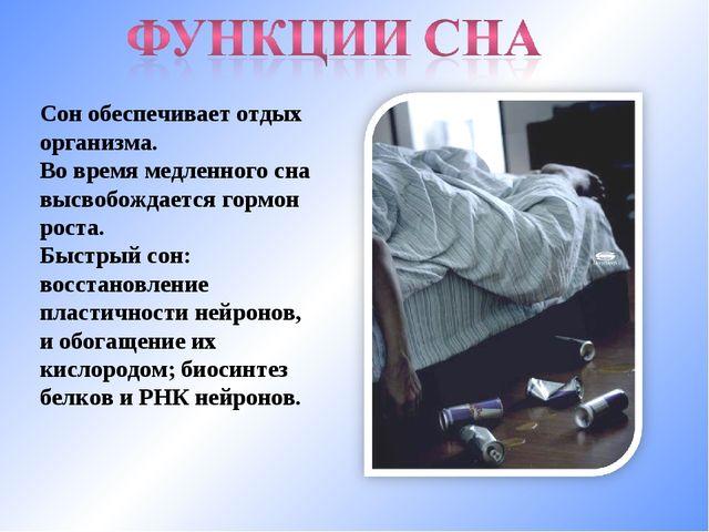 Сон обеспечивает отдых организма. Во время медленного сна высвобождается горм...