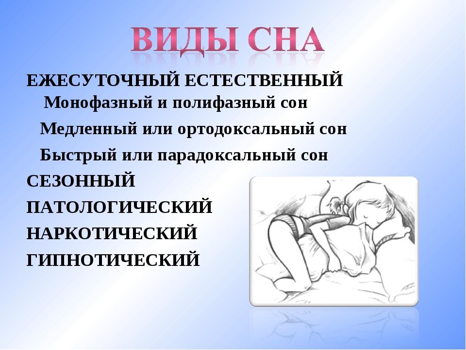 ЕЖЕСУТОЧНЫЙ ЕСТЕСТВЕННЫЙ Монофазный и полифазный сон Медленный или ортодоксал...