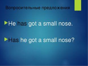 Вопросительные предложения Не has got a small nose. Has he got a small nose?