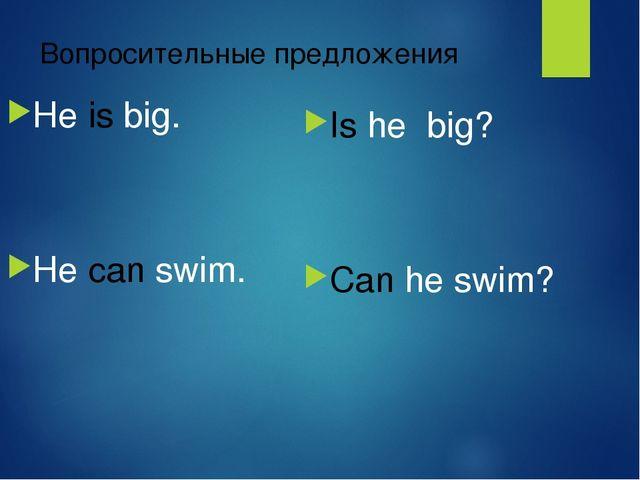 Вопросительные предложения He is big. He can swim. Is he big? Can he swim?